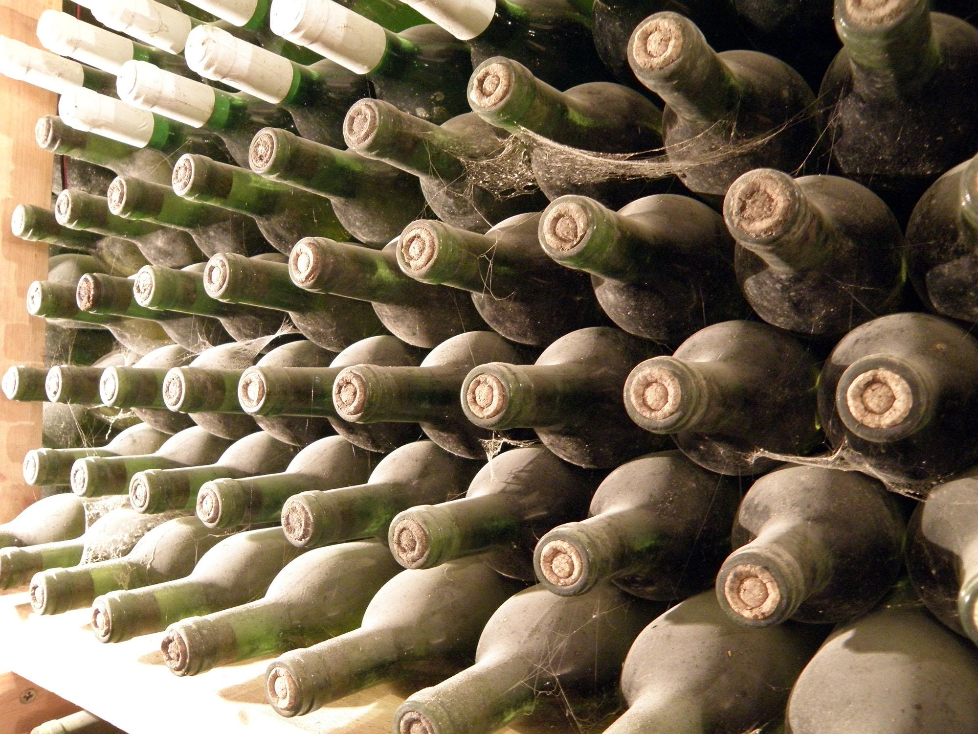 бутилки вино изба габровски свищов